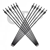 GPP Archery Carbon 30-Inch Targeting/Hunting Arrows with Field Points Replaceable Tips (12 Pack) for Recuve Bow & Compound Bow