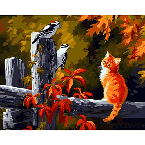Dinfoger New Bird Cat Digital Oil Painting Paint by Number Canvas Room Home Decor No Frame-Halloween Christmas Decoration Painting -
