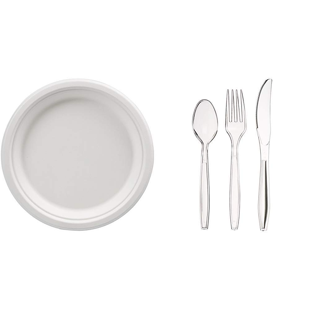 AmazonBasics Compostable Plates, 9-Inch, 500-Count + 360-Piece Clear Plastic Utensil Cutlery Set