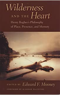 Selves in Discord and Resolve: Essays in Kierkegaard's Moral