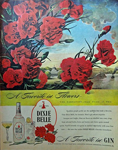 Ohio State Bird Flower (Dixie Belle Gin, 40's Print Ad. Full Page Color Illustration (Carnation-state flower of Ohio by Everett Henry) Original Vintage 1946 Collier's Magazine Print Art)