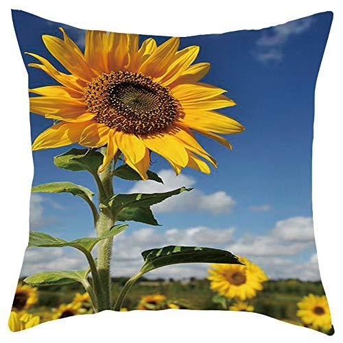 TIANMI Short Plush Pillowcase Sofa Cushion Set Home Decoration