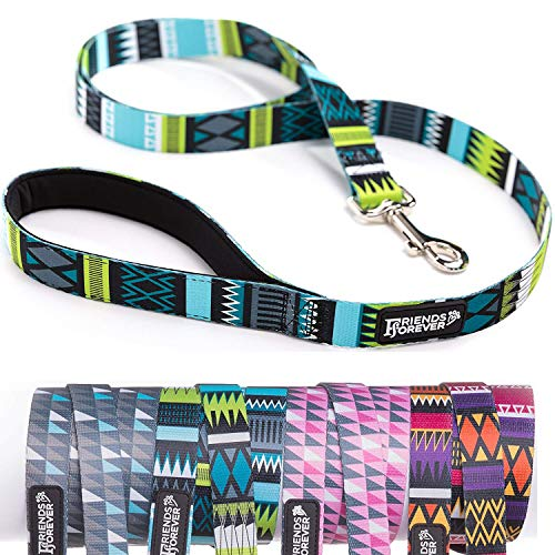 - Friends Forever Durable Nylon Dog Leashes for Small Dogs to Large Dogs, Pattern Cat Leashes for Walking - Puppy Leash 5 Feet Long for Dogs & Cats, Tribal Teal