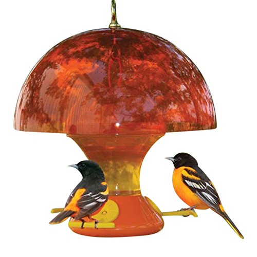 Habanerofire Deluxe Oriole Bird Feeder Bundle with 52 Ounce Feeder, Orange Dome Attracting Baffle and 8 Ounce Nectar - Oriole Deluxe Feeder