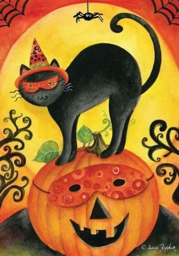 HALLOWEEN BLACK CAT ON PUMPKIN FALL AUTUMN HOUSE FLAG 28X40 BANNER