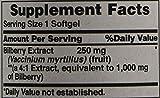 Puritan's Pride Bilberry 4:1 Extract 1000 mg-90