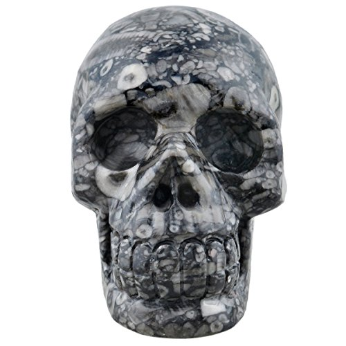 (SUNYIK Insect Fossil Carving Skull Statue,Pocket Stone Figurine Decor 3