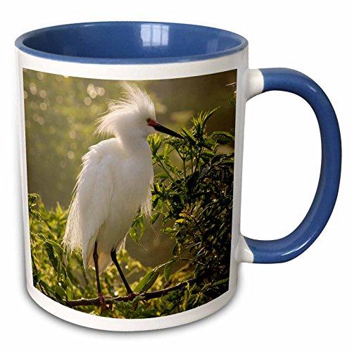 3dRose mug_89222_6
