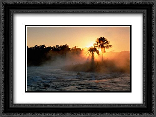 Buriti Palm Gallery Forest Along Formoso River, Emas National Park, Brazil 2X Matted 24x18 Black Ornate Framed Art Print by De Roy, Tui