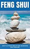 img - for Feng Shui: How to Attract Wealth and Abundance into Your Life, A Beginner's Guide (Feng Shui, Feng Shui Tips, Wealth, Finance) book / textbook / text book