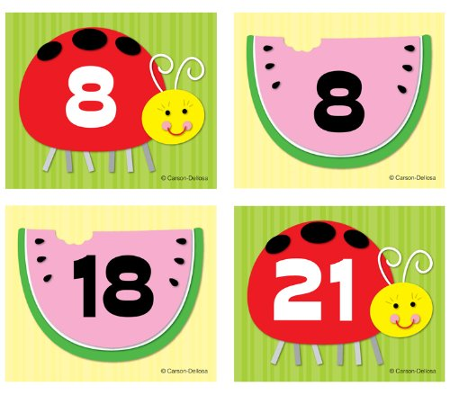 Watermelon/Ladybug Calendar Cover-Up -