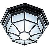Acclaim 2002BK Flush Mount Collection 2-Light Ceiling Mount Outdoor Light Fixture, Matte Black