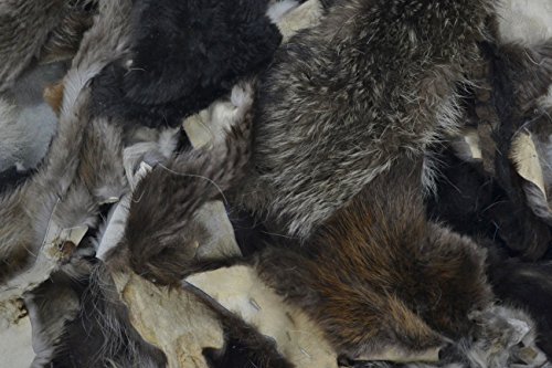 Fur Scrap Fox Coyote Raccoon Beaver Craft Pieces 1 Pound Mix Small - Pieces Fur Beaver
