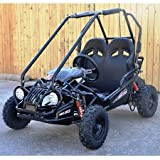 High Quality Gas Saving Youth 163cc Go Kart 168F 5.5 HP General Purpose Engine - PRO Trail Master Kids XRX Go Kart w/Fully Automatic, Adjustable Seat, Remote Control Engine Shut Off, L.E.D Head Lights