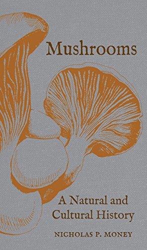 Mushroom Natural - 3