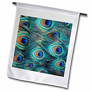 fl_83563_1 Danita Delimont - Natural Patterns - Natural pattern in male peacock feathers - NA02 AJE0235 - Adam Jones - Flags - 12 x 18 inch Garden Flag