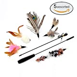 Cat Toys Interactive Feather Teaser Wand Toy Set with 5 Refills Feathers Bird Catcher for Cats & Kitten