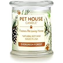 One Fur All 100% Natural Soy Wax Candle, 20 Fragrances - Pet Odor Eliminator, 60-70 Hrs Burn Time, Non-toxic, Eco-Friendly Reusable Glass Jar Scented Candles – Pet House Candle, Evergreen Forest