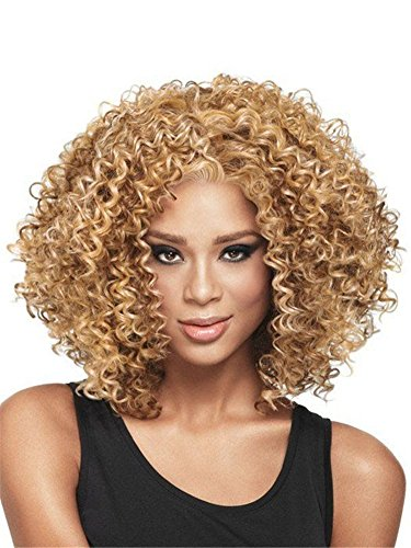 Diy-Wig Afro Curly Hair Wigs For Black Women Blonde Kanekalon Synthetic Heat Resistant Fiber Cosplay Hair Full Wigs (Blonde) by Diy-Wig (Image #2)