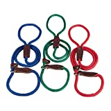 Slip Lead for Dogs 6 Foot Blue, My Pet Supplies