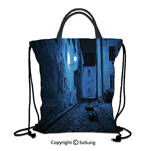 Urban 3D Print Drawstring Bag String Backpack,Black Cat Crossing Deserted Street at Night Mysterious Old European Town Alley,for Travel Gym School Beach Shopping,Blue Black White (Best Nappies To Use At Night)