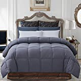 Best Goose Down Comforter Kings - Decroom 100% Cotton Quilted Down Comforter Grey Review