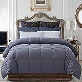 Best Goose Down Comforters - Decroom 100% Cotton Quilted Down Comforter Gray Review