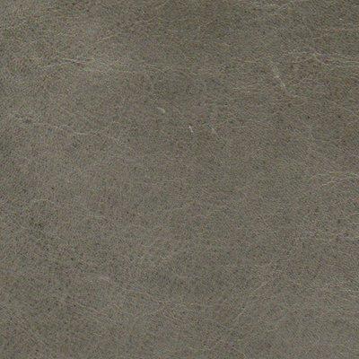 Coja spx9556 SOLAR Sofa, Gray Leather