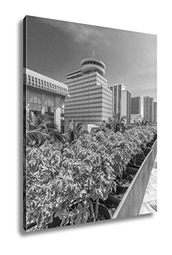 Ashley Canvas Palm Trees And Building Tops In Honolulu Hawaii USA Tropical City Vacation, Wall Art Home Decor, Ready to Hang, Black/White, 20x16, AG6406288 by Ashley Canvas