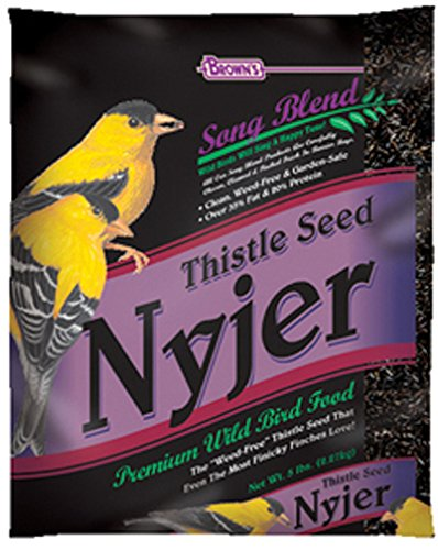fm-browns-song-blend-nyjer-thistle-seed-for-pets-10-pound