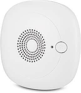 YQST Mini purificador de Aire enchufable del generador de ozono, esterilizador de ozono portátil aniónico doméstico, Limpiador de ozono Personal para Habitaciones pequeñas: Amazon.es: Hogar