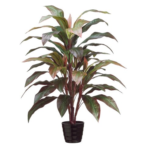 40'' Cordyline Silk Plant w/Pot -Red/Green (case of 4) by SilksAreForever