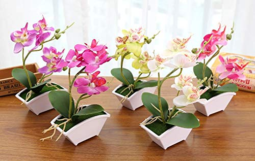 Orchid Flower Phalaenopsis (Jumpstar Artificial Orchid, Phalaenopsis Orchid, Moth Orchid, Fake Flower, White, Pink, Green, Purple. 5 inch Orchid, 8.5 inch Total Height (White))