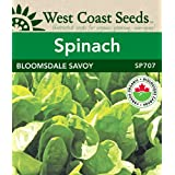 Spinach Seeds - Bloomsdale Savoy Organic