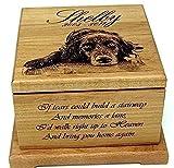 Pet Memorial urn Pet Cremation Urn Memorial Gifts Custom Urn Personalized Dog Keepsake Urn Cat Urn Cat Memorial Pet Memorial Box Review