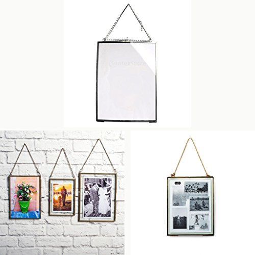 DYNWAVE Antique Glass Metal Picture Photo Frame Portrait Dried Plant Preserver Holder, for Home Party Decor - -