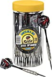 Fat Cat Darts in a Jar: Steel Tip Darts with Storage/Travel Container, 19 Grams (Pack of 21)