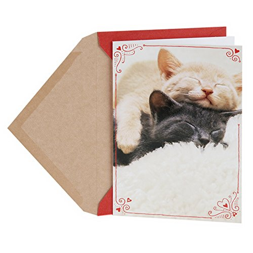 Hallmark Shoebox Valentine's Day Greeting Card (Sleeping Kittens)