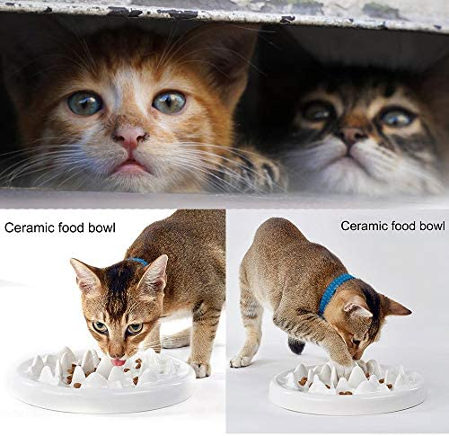 kathson Cat Slow Feeder Bowl, Ceramic Slow Eating Bowl Fun Interactive Feeder Prevent Feeder Anti Gulping Healthy Diet Pet Bowls Against Bloat Indigestion Obesity