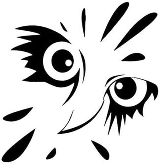 Pegatinas Para El Cuerpo Protector Solar Pegatinas Reflectantes 15X14 5 Cm Cara De Búho Divertido De Dibujos Animados De Plástico Negro Calcomanía Pegatinas De Coches Suministros De Automóviles: Amazon.es: Coche y moto