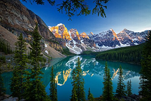 nery Forests Moraine Lake Banff (No.011040) - Poster Art Print on Canvas 30x20 inch ()