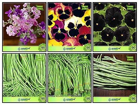 Creative Farmer Seeds Online India Combo Flower Seeds