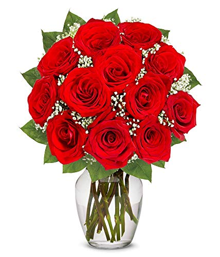 Flowers – One Dozen Long Stemmed Red Roses (Free Vase Included)