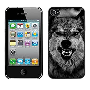 Impact Case Cover with Art Pattern Designs FOR iPhone 4 / 4S Wolf Ferocious Muzzle Teeth Roar Black Betty shop