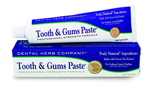 Dental Paste (Dental Herb Company DHC-TGP Tooth & Gums Paste Value 3-Pack)