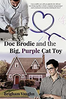 Doc Brodie and the Big, Purple Cat Toy by [Vaughn, Brigham]