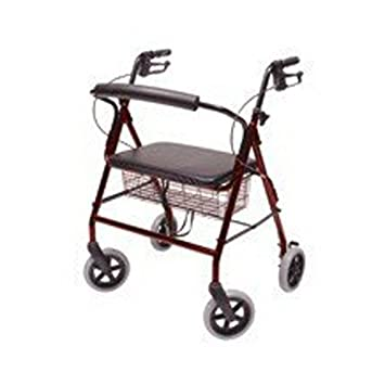 Amazon.com: Walkabout Four-Wheel Imperial andador: Health ...