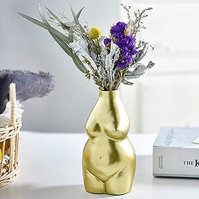 Nbhuzehua 6 2 Small Ceramic Flower Vases Decorative Boho Modern Home Decor Female Body Art Gold Amazon Sg Home