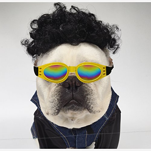 Dog Costume Pet Curly Wig for Cats Dogs with Pet Sunglasses Washable Dog Hair with Adjustable Elastic Bungee Fancy Dress for Festival Party (Holloween Costumes Rock Star)
