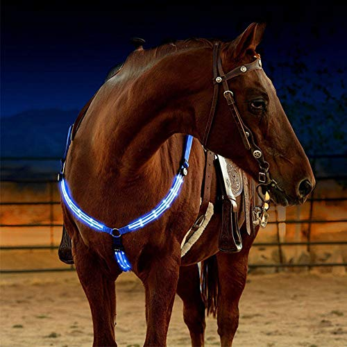 Highest Rated Horse Breastplates
